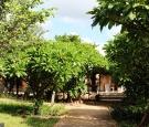Dhamma Nagajjuna 2 - Mini Hall